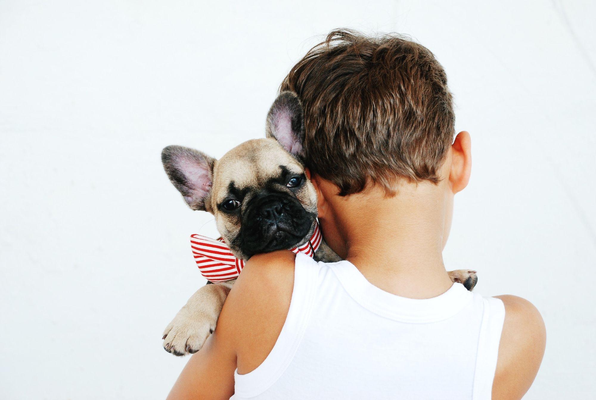 pug-affectionate-with-kids-unsplash-source